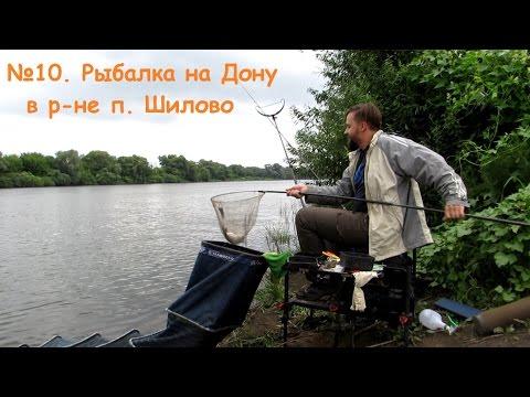 в воронеже на дону рыбалка