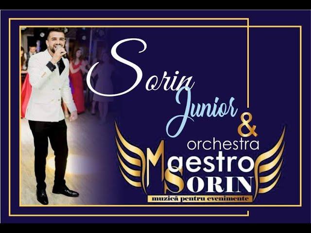 formatie nunti focsani formatia maestro sorin im yours live 2012