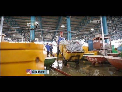 SALIHA -Referensi Tempat Ikan Dan Seafood Hasil Tangkapan Laut Di Jakarta