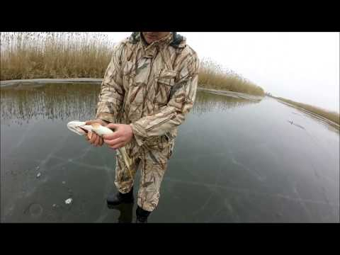 Рыбалка на жерлицы 09 01 2017 Нормальный клёв