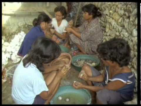 Coral Triangle (sinhala Version) video