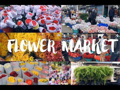 Asia's BIGGEST Flower Market  Vlog