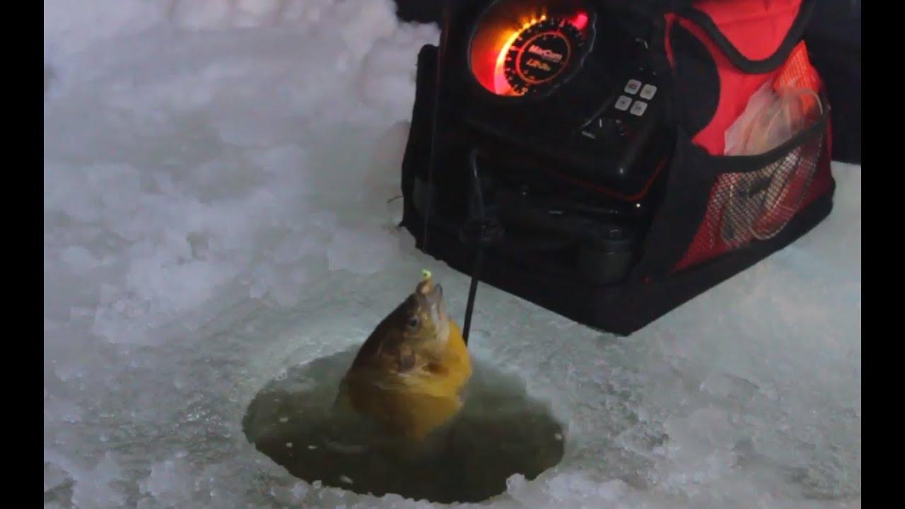Ice Fishing Bluegill Bluegill Ice Fishing Tips