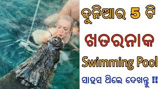ଯଦି ସେତିକି ସାହସ ଅଛି, ତାହେଲେ ଏହି Video ଦେଖନ୍ତୁ   Swimming Pools you must visit in your life