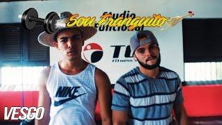 SOU FRANGUITO 🐔| Paródia - Luis Fonsi - Despacito ft. Daddy Yankee
