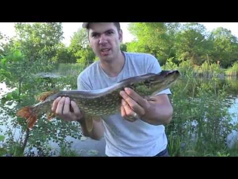 ловля щуки на маленьких озерах видео
