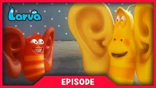 LARVA - COCOON | Cartoon Movie | Cartoons For Children | Larva Cartoon | LARVA Official