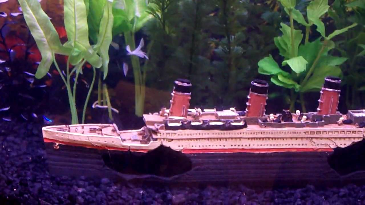 Freshwater aquarium titanic ship fish tank youtube for Youtube fish tank