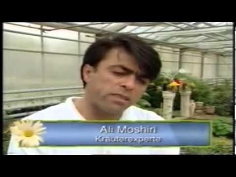 Unser Garten/ Dr. Ali Moshiri