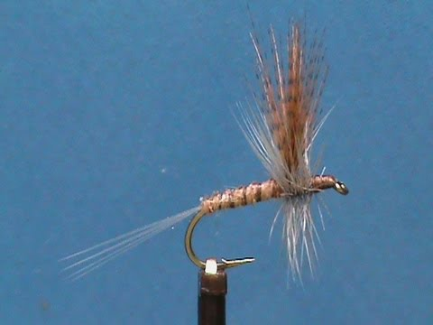 Nymph Fly Tying Fly Tying a Biot Light