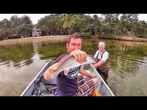 Cast Net Fishing Ballast Point Tampa Bay