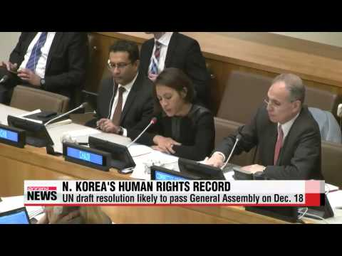 UN Security Council likely to put North Korea′s human rights record on agenda th