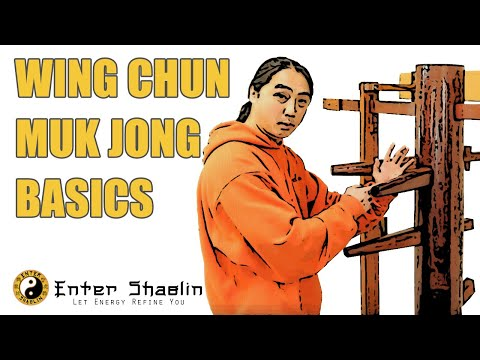 Wing Chun Muk Jong (Wooden Dummy) Beginners Training Drill Developing One Technique Image 1