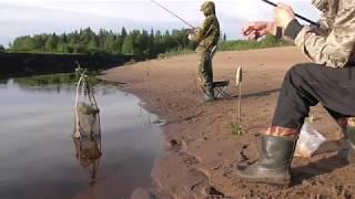 Рыбалка на донку. Июль 2017.