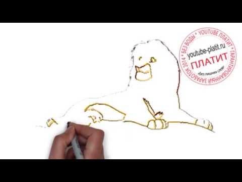 Видео как нарисовать Симбу