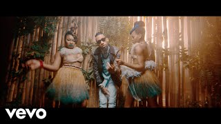 Phyno - Nnunu [Official Video] ft. Stormrex