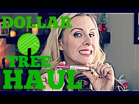 DOLLAR TREE HAUL $56! | CHRISTMAS GIFTS