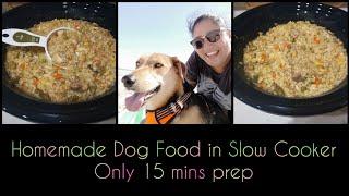 Quick homemade dog food recipe (2020)