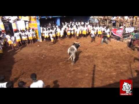 Smile Please | Kollywood Jolly Jallikattu | Vikatan Tv video