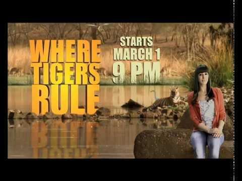 Where Tigers Rule - Nargis Fakhri