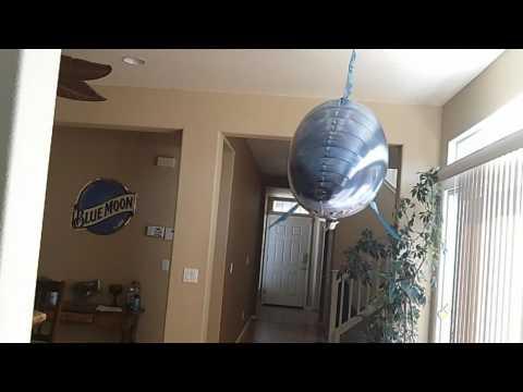 Air Swimmer Flying Shark on Stu's Channel
