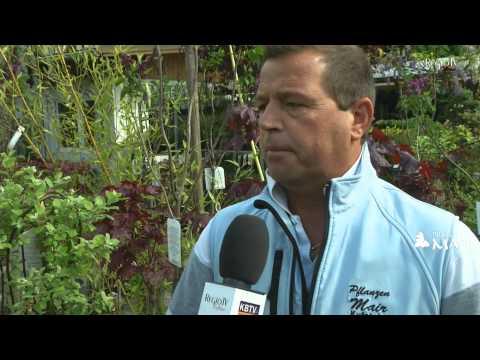 Pflanzen Mair Kufstein - Gartencenter Online 2014