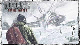 S.T.A.L.K.E.R Nature Winter -  Серия 7 [На Радар]