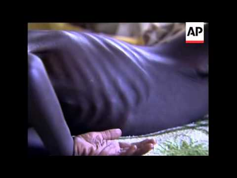 UN mission warns of famine in southern Sudan