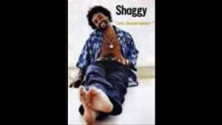 Shaggy  Mr  Boombastic lyrics)