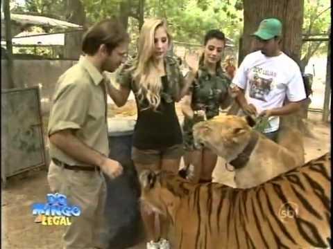Domingo Legal - Bruna e Diana em zoológico na Argentina