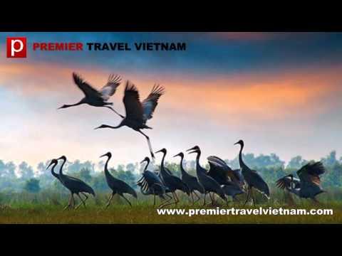 Vietnam deluxe tours - Premier Travel Vietnam