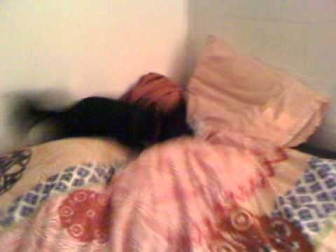 Girr attacking ashley under the blanket