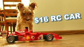 $16 RTR F1 RC Car Worth it? - F1 1/18th Formula Racing Car - TheRcSaylors