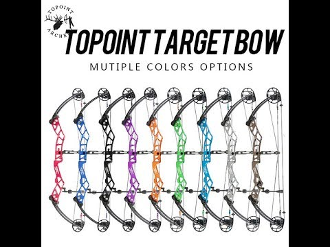 2018 Topoint Serinity target compound review