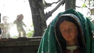 Virgen de Guadalupe Arbol, Pinto Lake, Watsonville, California USA Jack D Deal Videos