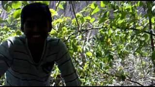 Trip to Savandurga1 0n  05-Dec-09.mp4