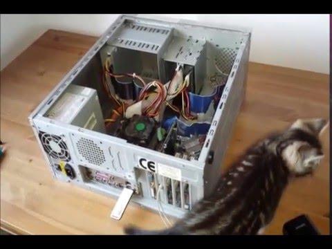 Nie Działa Karta Sieciowa LAN RJ45 W Komputerze PC? PORADNIK