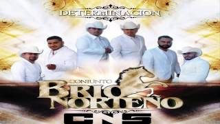 Conjunto Brio Norteño Cd 2014 Mix( Determinacion )