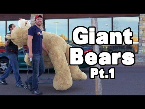 Giant Bears Pt1