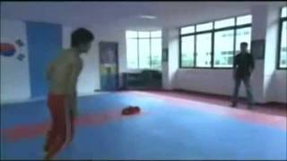 jeet kune do vs taekwondo (bruce lee series)
