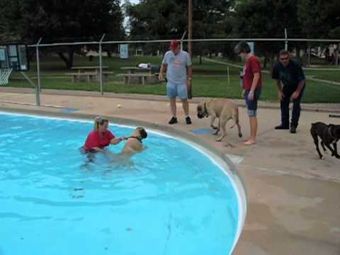 Aquatics Aquatics Hours