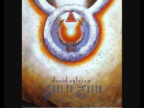 David Sylvian - Taking the Veil