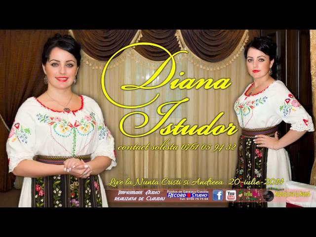 03 Diana Istudor LIVE (Colaj SARBA) 70 de vai- Nunta Cristi si Andreea 20-06-2014