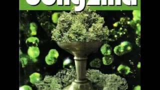 Watch Bongzilla Grog Lady video