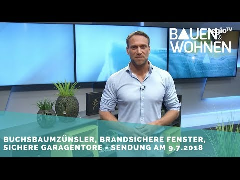 Buchsbaumzünsler, Treppenrenovierung, Brandschutz, Heizung tauschen - Sendung am 9. Juli 2018