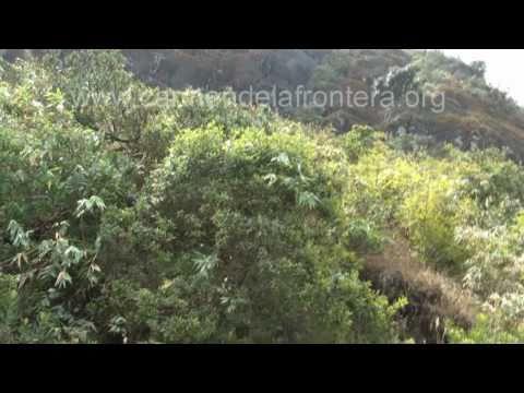 Accidente a la altura de Los Chorros viajando a Huancabamba