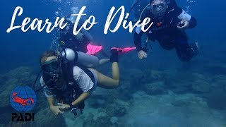 What to Expect from an Open Water Course? | Tips for New Divers