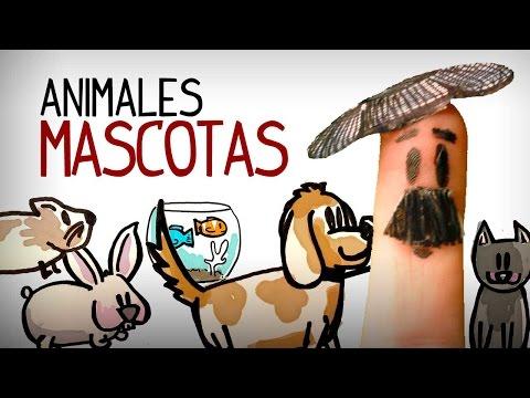 Los Animales: Mascotas. Aprender Vocabulario Español