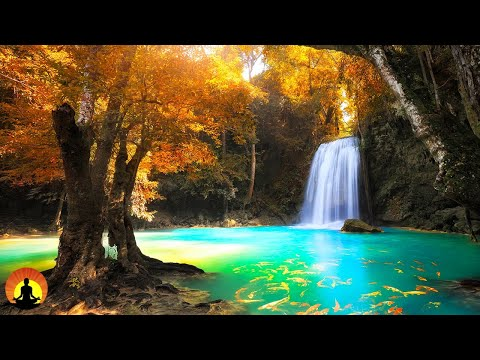 Relaxing Music, Meditation, Healing, Sleep Music, Yoga, Spa, Calming Music, Zen, Relax, Study, ☯3602