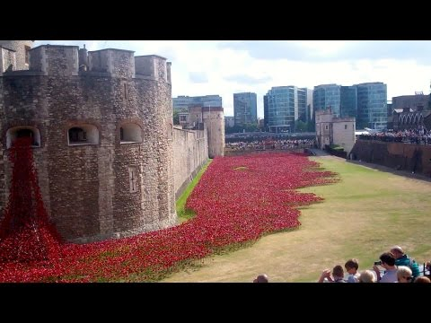 WWI Memorial Poppies Tower of London